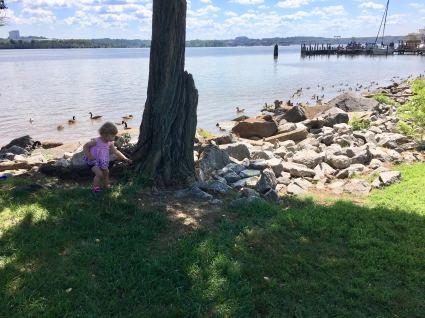Feeding the birds was almost as fun as feeding herself